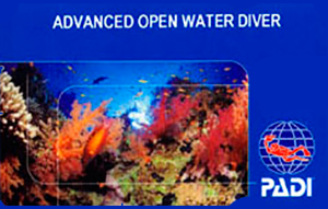 open water diver ssi manual